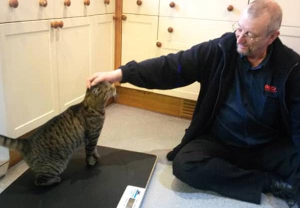 My Cat Diary by Nimbus – 13 April