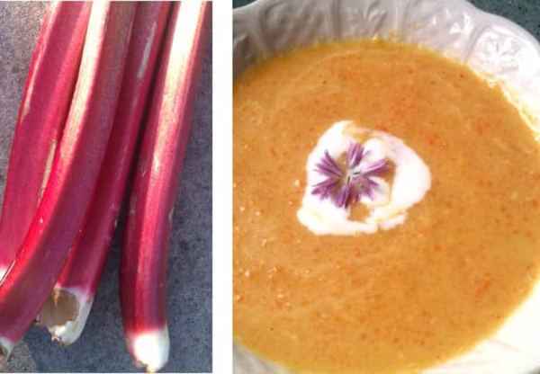 Savoury Rhubarb Recipes