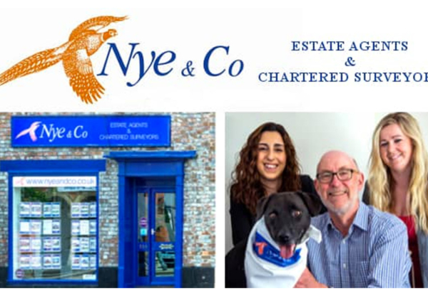 Nye & Co Estate Agents