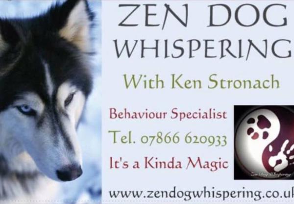 Zen Dog Whisperer Ken Stronach