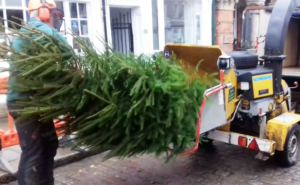 Charity Christmas Tree Mulching & Card Recycling @ Hungerford Town Hall | United Kingdom