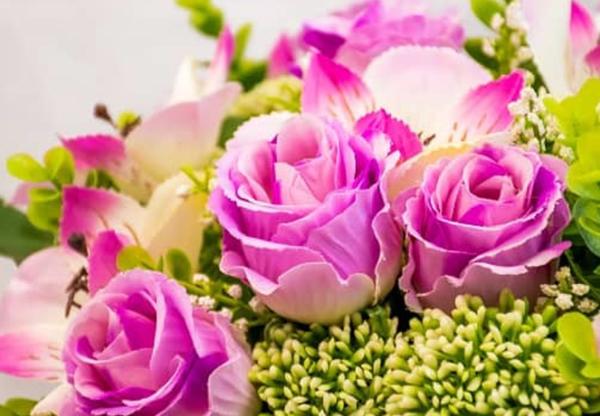 Susie Florists