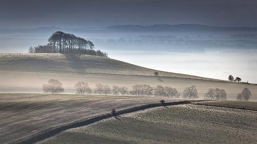 Misty Woodborough Hill