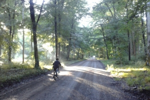 child cycling in Savernake