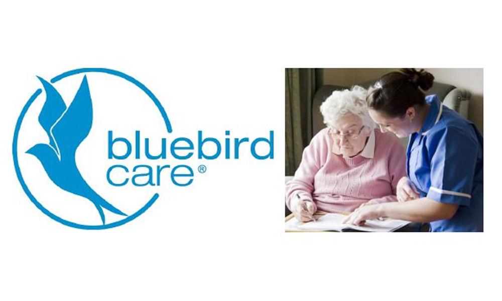 Bluebird logo & photo