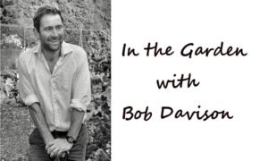 In the Garden with Bob Davison