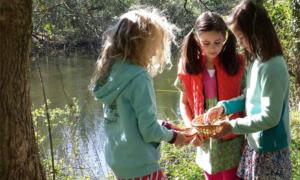 Alder Bridge girls in woods