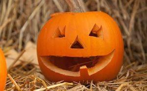 Pumpkin Carving at Cobbs Farmshop @ Cobbs Farmshop | England | United Kingdom
