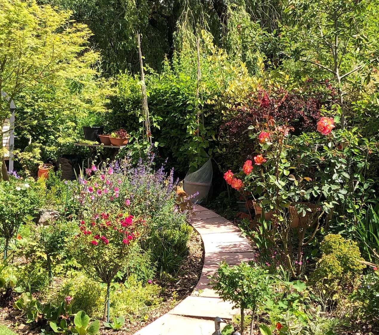 Garden Island path crop
