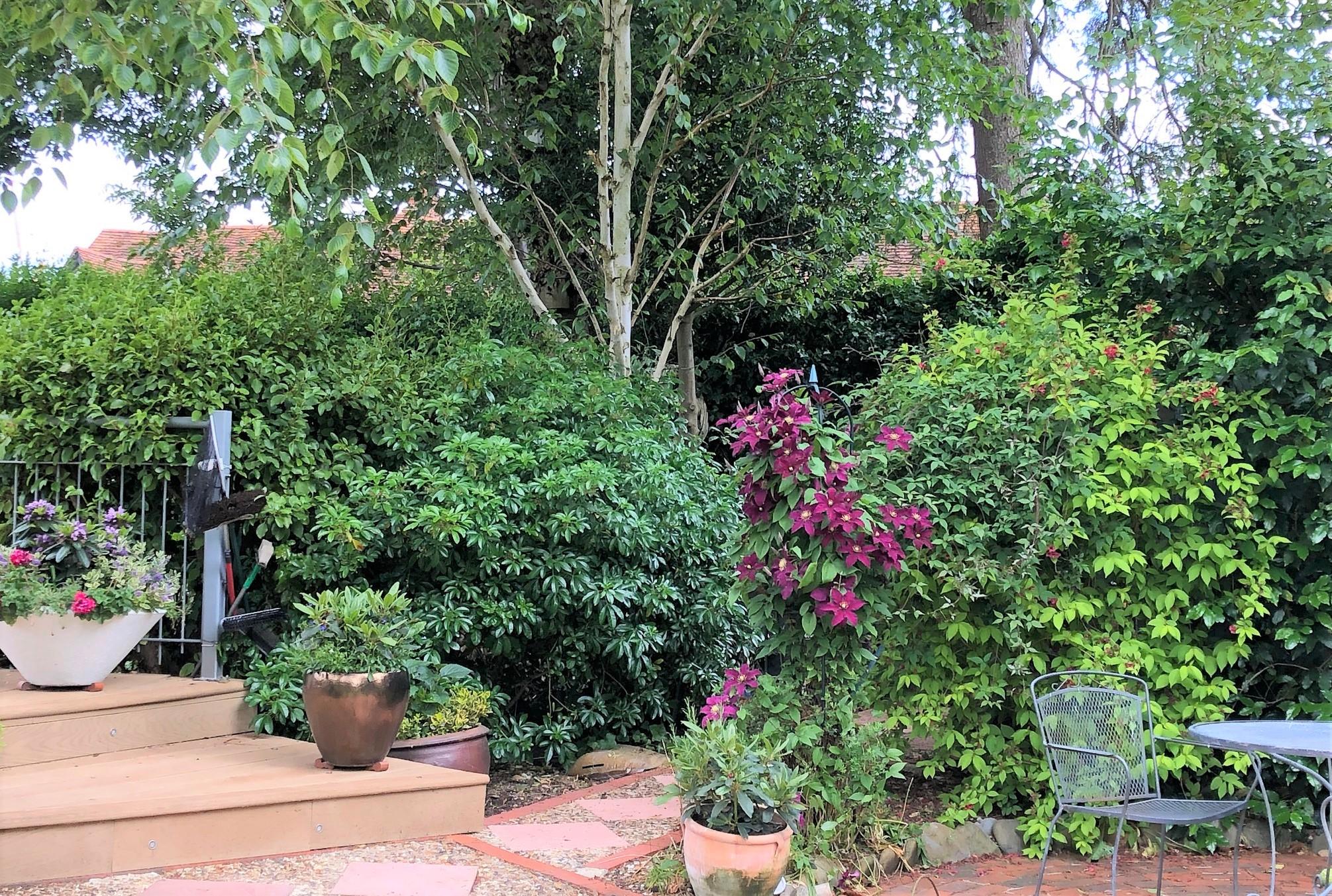 Garden Island patio