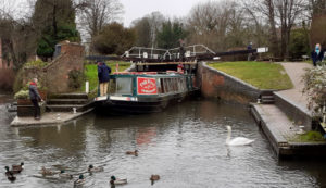 Rose of Hungerford in Newbury