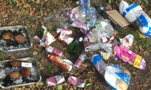 Litter in the landscape
