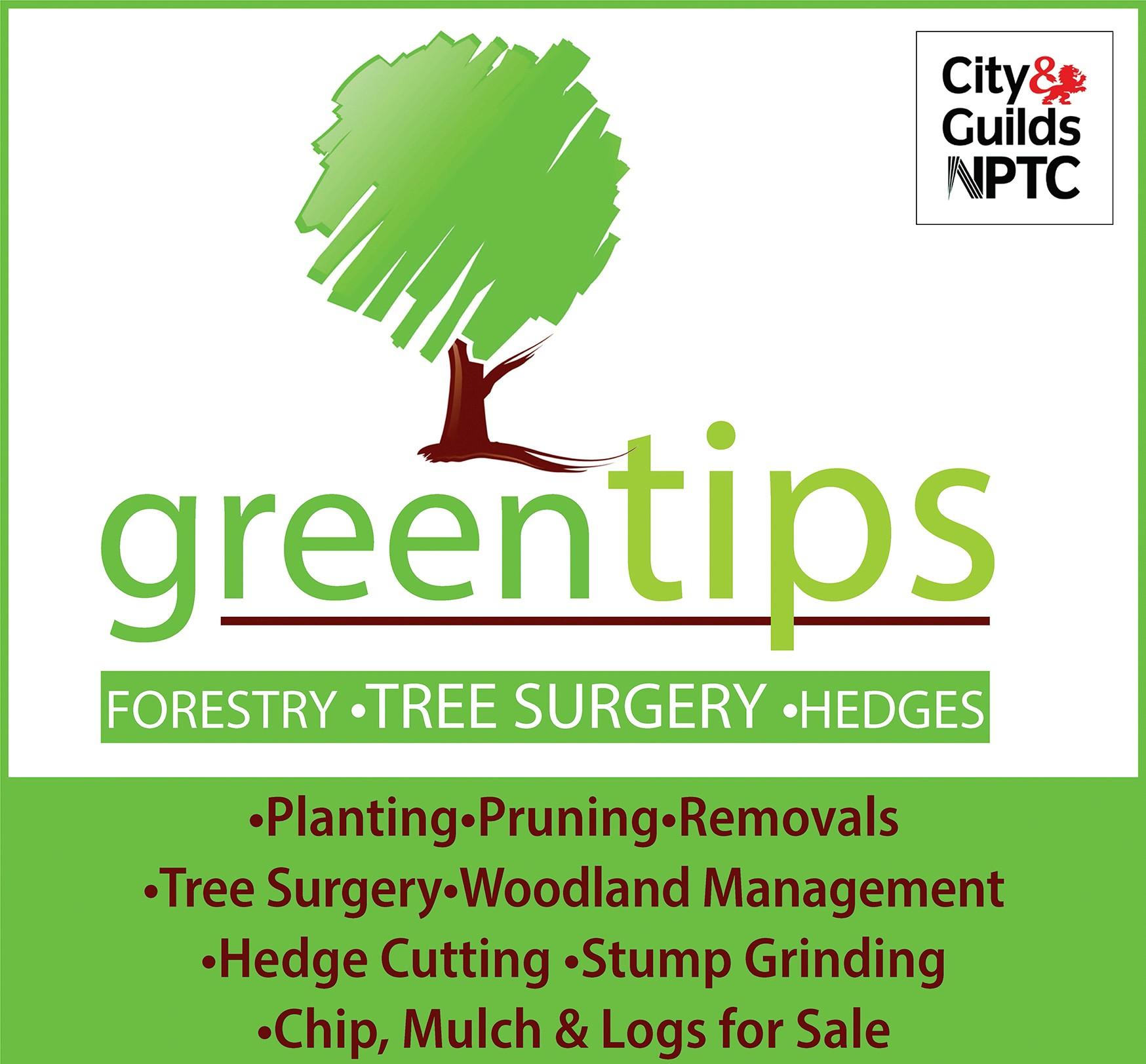greenTips tree surgery